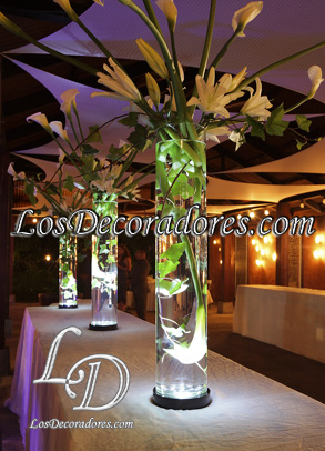 Decoraci�n con luz led y calas
